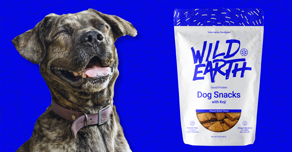 wild earth dog food discount code, promo code